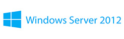 Microsoft Windows Server Hosting